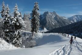 Les Monts - Chevreuils