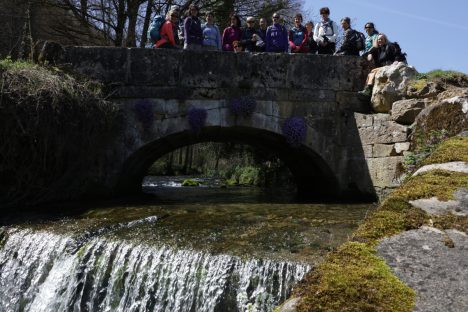 10 avril Nozon, Cascade du Dard, Tine de Conflens