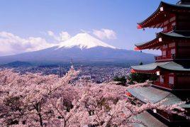 Repérage Japon pour novembre 2018