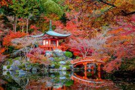 Le Japon en couleurs en novembre 2019
