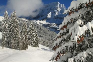 26 janvier selon les chutes de neige