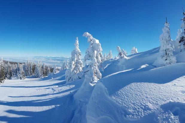 1 déc raquettes selon le niveau de neige...