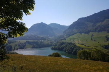 25 mai Le Mont Bifé, Montsalvens, gorges de la jogne **