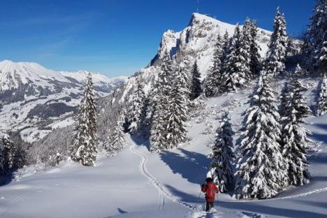19 déc en raquettes selon les chutes de neige