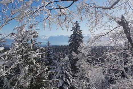 12 déc en raquettes selon les chutes de neige