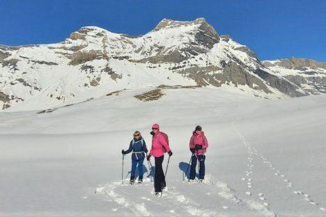 20 février le plateau d'Anzeindaz