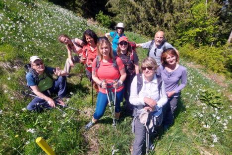 30 mai la vallée de Montbovon et les Narcisses